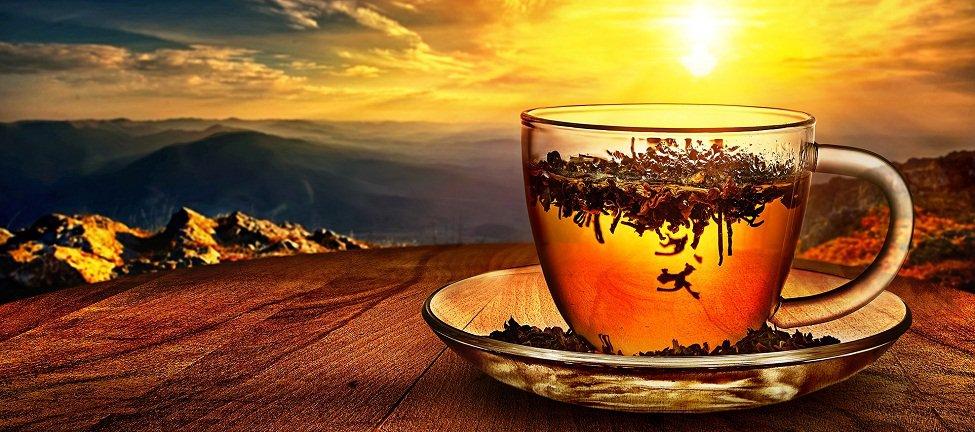 где выращивают чай в китае